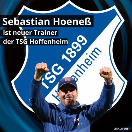 Sebastian Hoeneß Hoffenheim